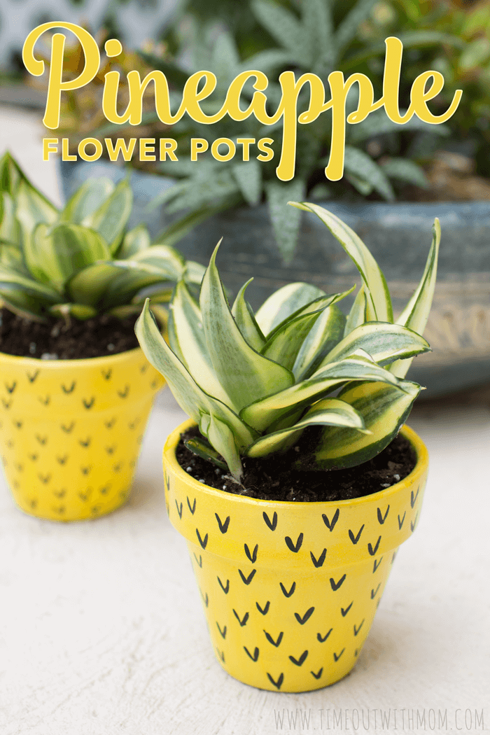 Pineapple-Flower-Pots-01